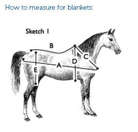 How to Measure for blankets